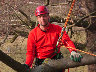 Rainer Metz, European Tree Technician